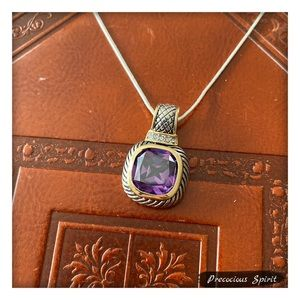Jewelry - Two-tone Classic square cable purple gem necklace